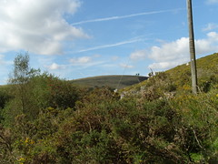 S1051812 (AppleJays) Tags: england nationalpark hills devon fields moors dartmoor moorland aonb tors