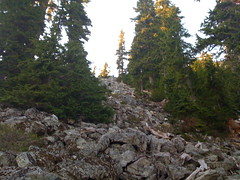Heading up the talus field