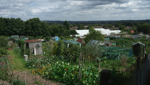 allotmentview-marlow
