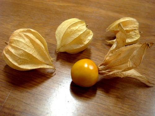 フルーツほおずき