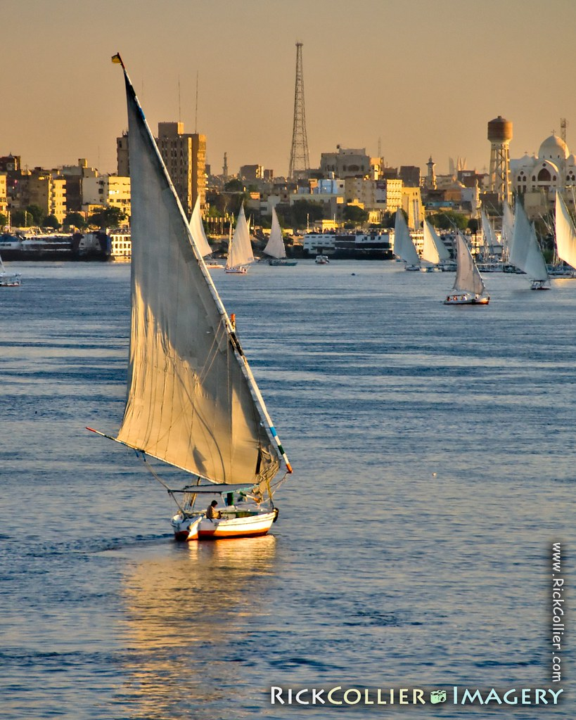 The sunset warmly illuminates a felucca as it sails to join the evening flotilla in the harbor at Aswan, Egypt.