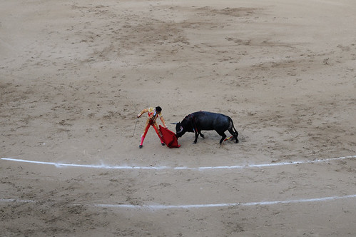 bullfight_8464 web
