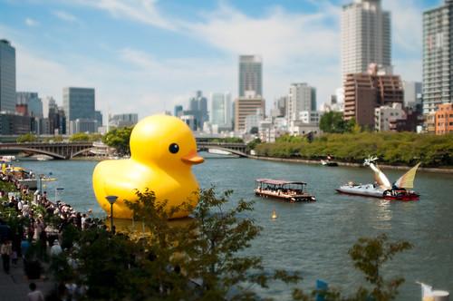 フリー画像| 人工風景| オブジェ| アヒルの人形| 巨大アヒル| 日本風景| 大阪| ティルト・シフト|  街の風景|   フリー素材|