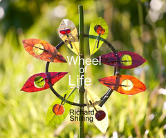 Wheel of Life Book (escher is still alive) Tags: sculpture sun colour leaves wheel circle star book excited september finished thorns 2009 ephemeral phew landart naturalart publish enviro enviroart andygoldsworthyhomage richardshilling soontohaveacopy