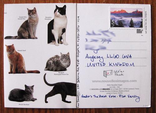Novelles images Foldover postcard, folded