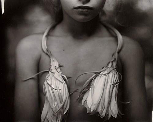 sally mann picture-8