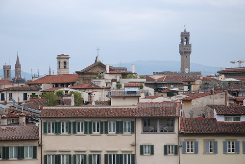 Roofs in Florence