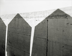 Shen Hao (www.mauroquirini.it) Tags: bw bn 4x5 largeformat folding biancoenero shenhao 10x12 ostialido grandeformato vecchiapineta