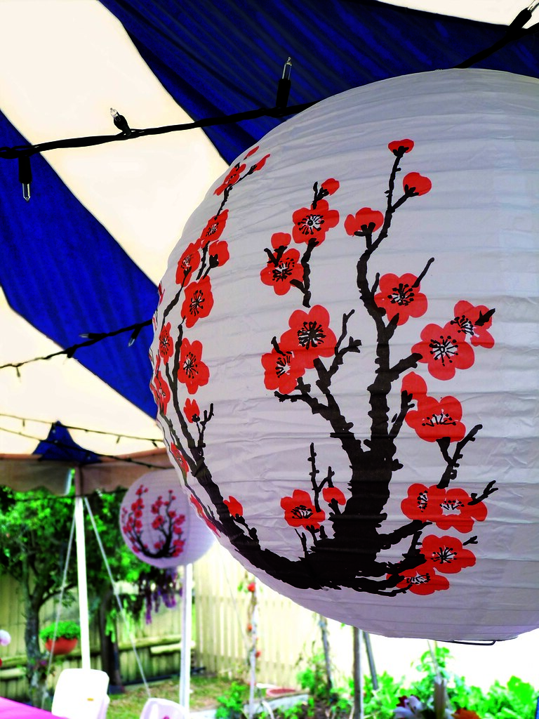 CHINESE THEME PARTY DECORATIONS