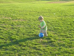 Nice Day for Playing Ball (5)