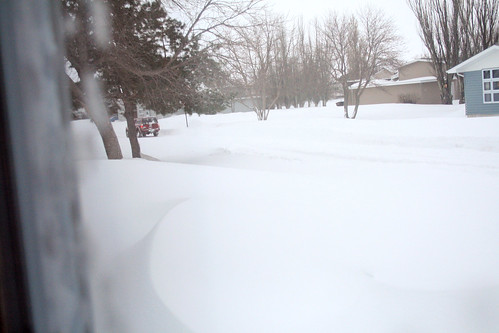 A sideways view out the window of the front lawn, including the completely buried front three steps.
