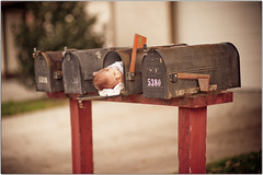 You've Got Male (Extra Medium) Tags: boy evan baby male mailbox newborn wheredobabiescomefrom notchildabuse 9monthdeliverysoundslikefedex