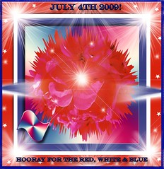 HOORAY FOR THE RED WHITE AND BLUE (fantartsy JJ *2013 year of LOVE!*) Tags: light red usa holiday color beauty america joy americanflag celebrations godblessamerica july4th independenceday hooray starspangledbanner whiteblue happybirthdayamerica mywinner anawesomeshot thesuperbmasterpiece
