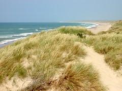 My newfound paradise (Kirsten M Lentoft) Tags: sea beach water denmark sand dunes jutland vesterhavet naturesfinest klitmøller nortsea anawesomeshot thesuperbmasterpiece kirstenmlentoft