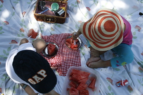 watermelon picnic