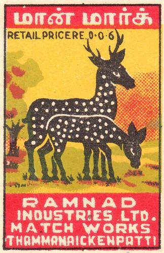 animalallumettes 024