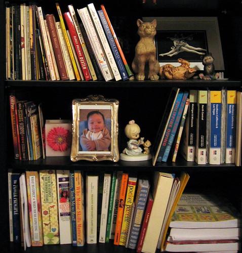 Ria's bookshelf