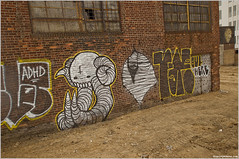 faro/adhd/swampy in williamsburg (andrew nicholas) Tags: ny newyork brick wall brooklyn faro graffiti graf vacant williamsburg adhd swampy
