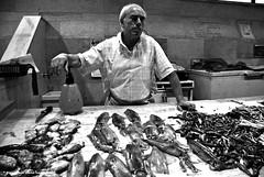 L'uomo e il mare (Francesca Sara Cauli) Tags: bw man fisherman nikon sardinia south bn marketplace mercato 2009 cagliari pescatore reportage polpo seppia fissh ocotopus d80 francescasaracauli