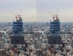東京247の壁紙プレビュー