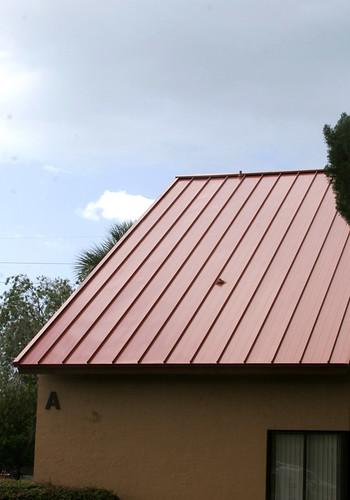 Metal Roofs by footbridgemedia