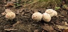 tiny mushrooms (bengi gencer) Tags: autumn cute smile leaves illustration forest mushrooms photography tounge whitecharacterdesign
