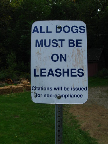 All dogs must be on leashes