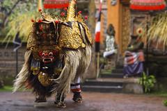 The Barong Dance of Bali (dusunman) Tags: bali indonesia dance traditional batu barong bulan batubulan peregrino27newvision