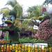 donald daisy bush