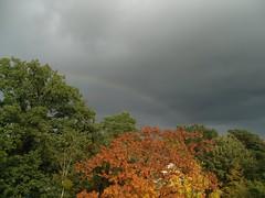Regenwolken ... (bayernernst) Tags: autumn oktober berlin clouds germany deutschland rainbow europa europe herbst wolken colored multicolored 2009 farbig bunt regenbogen regenwolken herbstlich wolkenhimmel meinberlin 12102009 sn207898
