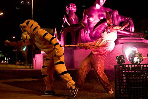 coelhinho e tigrão na night.