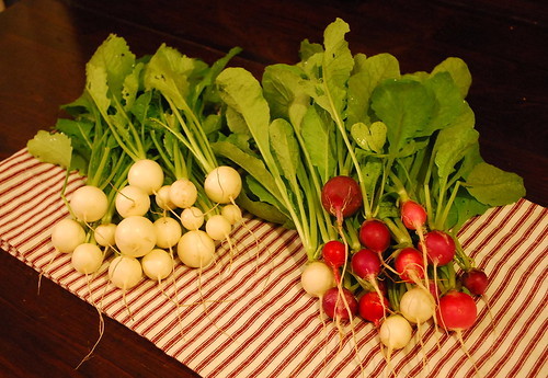 turnips and radishes