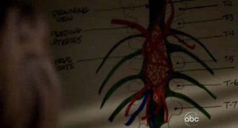 Grey's Anatomy Meredith Derek