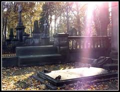 Zaduszki in Old Cemetery in d (Agnieszka G.) Tags: cemetery cementerio poland polska polonia d cmentarz otw abigfave starycmentarz anawesomeshot citrit