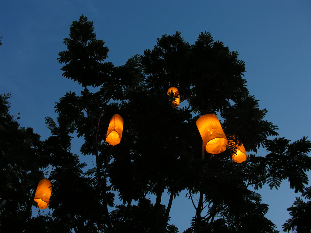 Yellow lanterns, indigo dusk