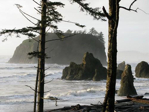 Ruby Beach (3)