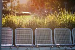 (KayVee.INC) Tags: sf sanfrancisco california ca sunset sunlight chairs seats embarcadero 2009 goldenhour cavey kayvee 071109 kayveeinc