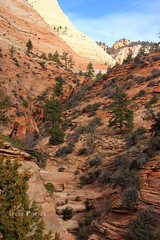 Zion National Park, November 2009