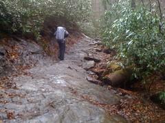 Kirk on Alum Cave Creek Trail