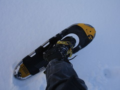 Snow shoe Photo