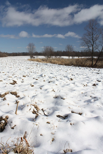 River of Snow in a Plowed Field