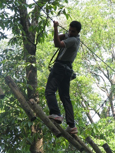 Rope_Challenge_Course_Pole_Walk