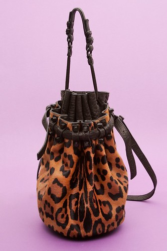 1-Leopard