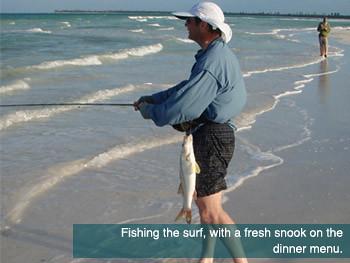 Fishing the Beaches