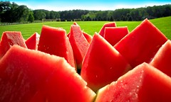 Perfect Summer Melonscape! (Josh Liba) Tags: pink blue trees red summer sky hot color green texture water colors beautiful grass fruit canon catchycolors landscape juicy perfect paradise day pieces power 10 g awesome vivid sunny bbq fresh powershot watermelon delicious saturation summertime sliced melon refreshing catchy mouthwatering g10 explored joshliba