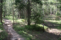 JCN: Mule Deer-Harmsen Access