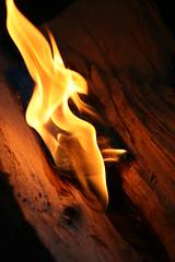Flames (quinn.anya) Tags: fire flame wood campfire splitlog firestarter chemicals melting orange
