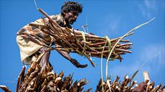 The Catcher (Henk oochappan) Tags: travel india canon eos 2009 madurai tamil tamilnadu southindia dravidian canoneos5d oochappan indianphotography tamillifeculture paraipatti img6308c