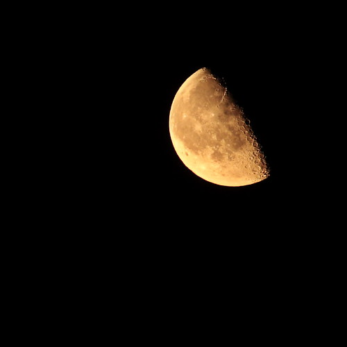 the welcome moon