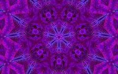 Fractal Art 60 (CharmaineZoe's Marvelous Melange) Tags: abstract color colour art geometric modern digital circle colorful pattern bright abstractart contemporary vibrant computergenerated digitalart vivid kaleidoscope mandala creation fantasy computerart mirrored fractal fractals trippy complex mathematical multicolor jazzy mandelbrot kaleidoscopic repeating psychedlic manipulate polychrome polychromatic fractalart complexpattern photoechoes charmainezoe kaleidoscopekreations
